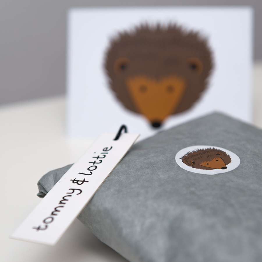 tommy & lottie hedgehog package with postcard