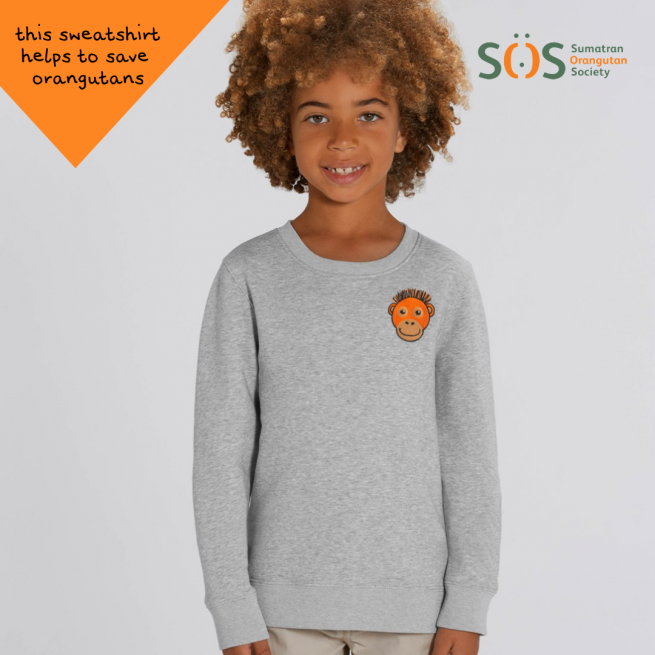 childrens organic cotton sweatshirt - orangutan