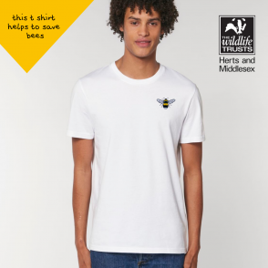 save the bees t shirt by tommy and lottie