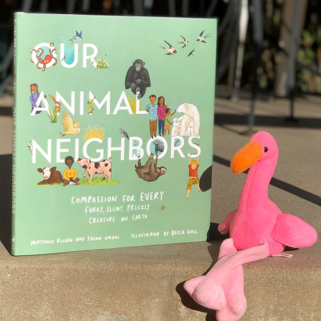 Our Animal Neighbors Book By Jason Gruhl and Matthieu Ricard, illustrated by Becca Hall