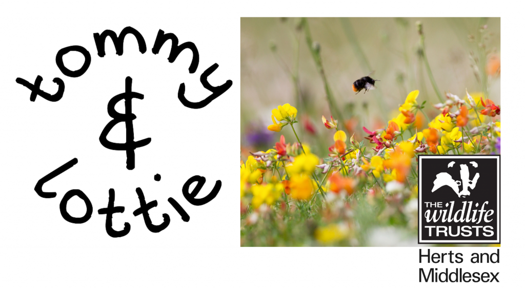 tommy & lottie and the herts and middlesex wildlife trust - world bee day